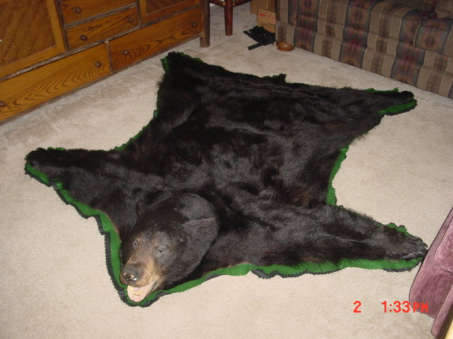 How To Make A Bearskin Rug Area Ideas