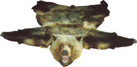 Bear Carpet Inc Carpet Vidalondon