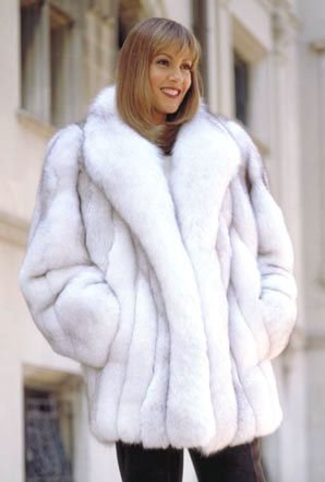 Coyote Fur Coat >> Fur pelts and coats of Mink Sable, Fox Chinchilla, Coyote, beaver, couger, fisher, badger, skunk ...