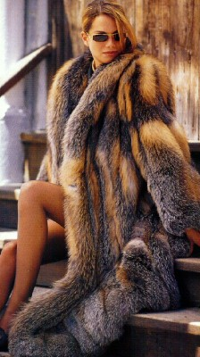 Fur pelts of mink lynx chinchilla wolf beaver sable marten